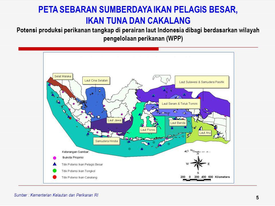 5 PETA SEBARAN SUMBERDAYA IKAN PELAGIS BESAR, IKAN TUNA DAN CAKALANG Potensi produksi perikanan tangkap di perairan laut Indonesia dibagi berdasarkan
