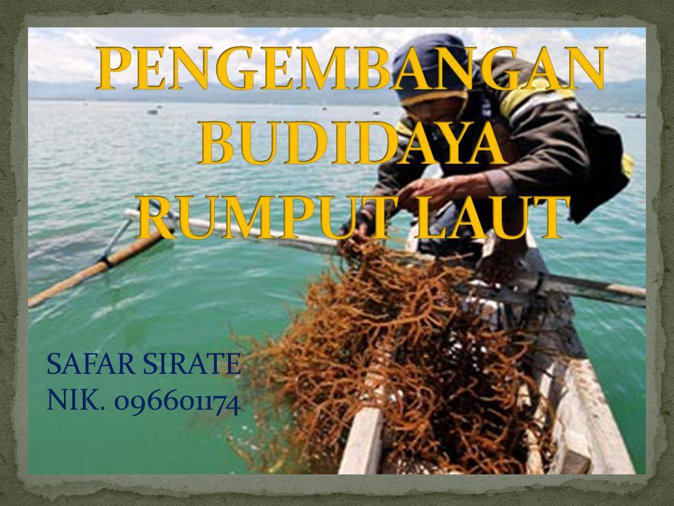 Potensi Sumberdaya Alam (SDA) Kelautan dan Perikanan Sulawesi Tenggara sangat besar, karena memiliki perairan laut seluas 114.879 Km² (77,2% dari total luas wilayah 153.872 Km²) dengan panjang garis pantai 1.740 Km, 2 pulau besar (Buton dan Muna), 3 gugusan kepulauan (Wakatobi, Tiworo dan Padamarang) dan 530 pulau kecil disertai teluk dan selatnya yang sangat luas, memposisikan provinsi ini terkelilingi laut memiliki kandungan keaneka ragaman biota laut bernilai ekonomis tinggi seperti Rumput laut, kerapu dan ikan budidaya lainnya, sehingga pada sector kelautan dan perikanan inilah tertumpu harapan memacu peningkatan perekonomian daerah Sulawesi Tenggara.