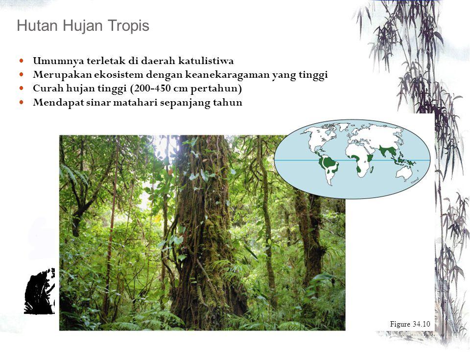 Memiliki bentuk-bentuk yang bervariasi tergantung dari iklim posisinya secara geografi EKOSISTEM DARAT Hutan Tropis Savana Gurun Kutub Chaparral Padan