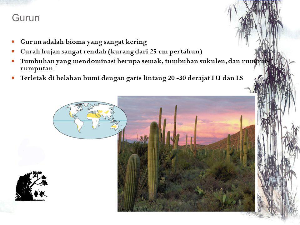 Kering, terletak di daerah tropis dan sub tropis. Didominasi oleh padang rumput yang luas dan diselingi oleh tumbuhan semak dan pohon yang berpencar H