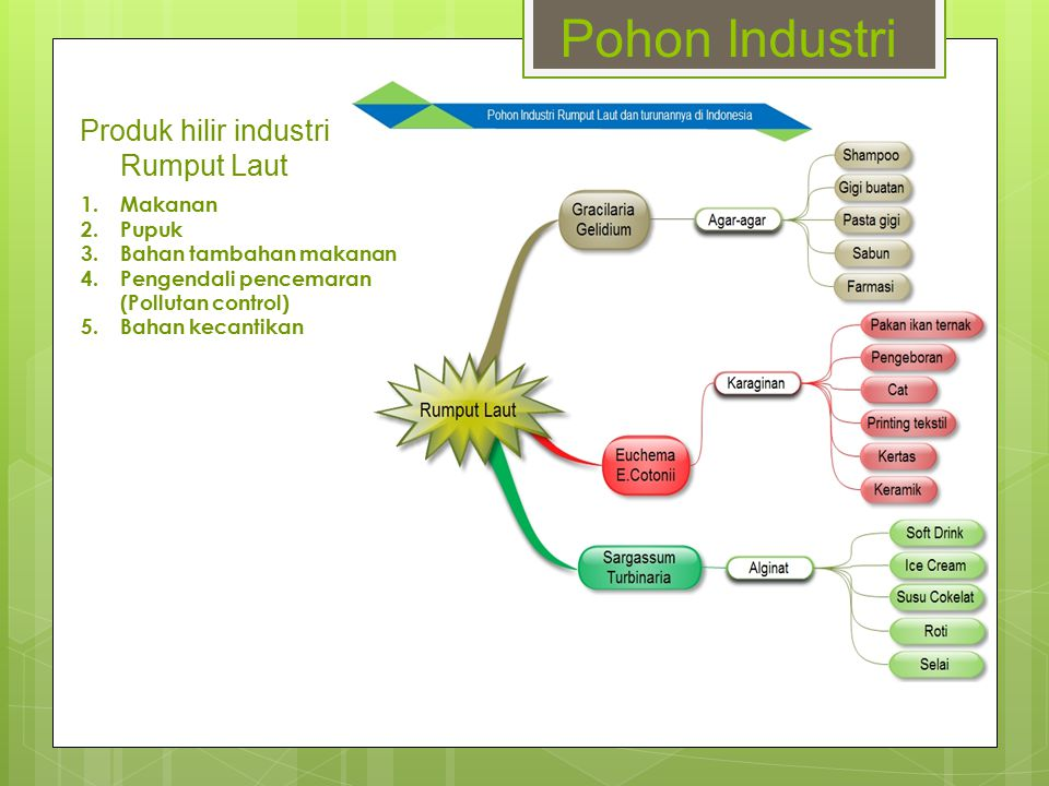 Pohon Industri Produk hilir industri Rumput Laut 1.Makanan 2.Pupuk 3.Bahan tambahan makanan 4.Pengendali pencemaran (Pollutan control) 5.Bahan kecanti