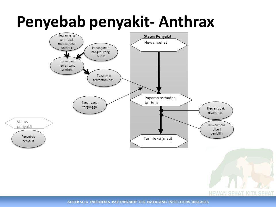 AUSTRALIA INDONESIA PARTNERSHIP FOR EMERGING INFECTIOUS DISEASES Penyebab penyakit- Anthrax Tanah yang terganggu Hewan yang terinfeksi mati karena Anthrax Penanganan bangkai yang buruk Spora dari hewan yang terinfeksi Tanah yng terkontaminasi Penyebab penyakit Hewan tidak divaksinasi Status Penyakit Paparan terhadap Anthrax Terinfeksi (mati) Status penyakit Hewan sehat Hewan tidak diberi penisilin