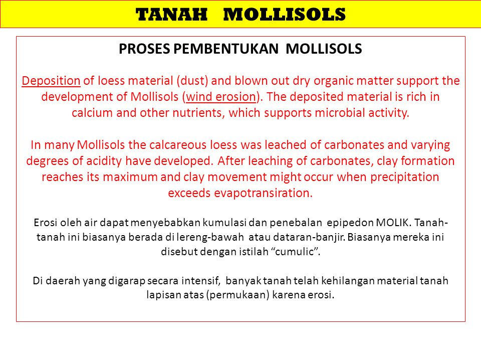 TANAH MOLLISOLS PROSES PEMBENTUKAN MOLLISOLS Deposition of loess material (dust) and blown out dry organic matter support the development of Mollisols (wind erosion).