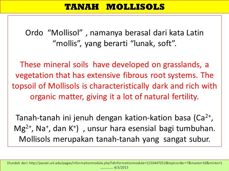 """TANAH MOLLISOLS Ordo """"Mollisol"""", namanya berasal dari kata Latin """"mollis"""", yang berarti """"lunak, soft"""". These mineral soils have developed on grassland"""