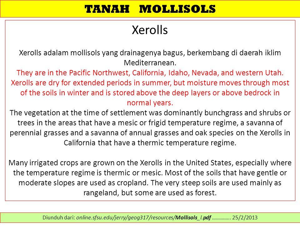 TANAH MOLLISOLS Xerolls Xerolls adalam mollisols yang drainagenya bagus, berkembang di daerah iklim Mediterranean. They are in the Pacific Northwest,