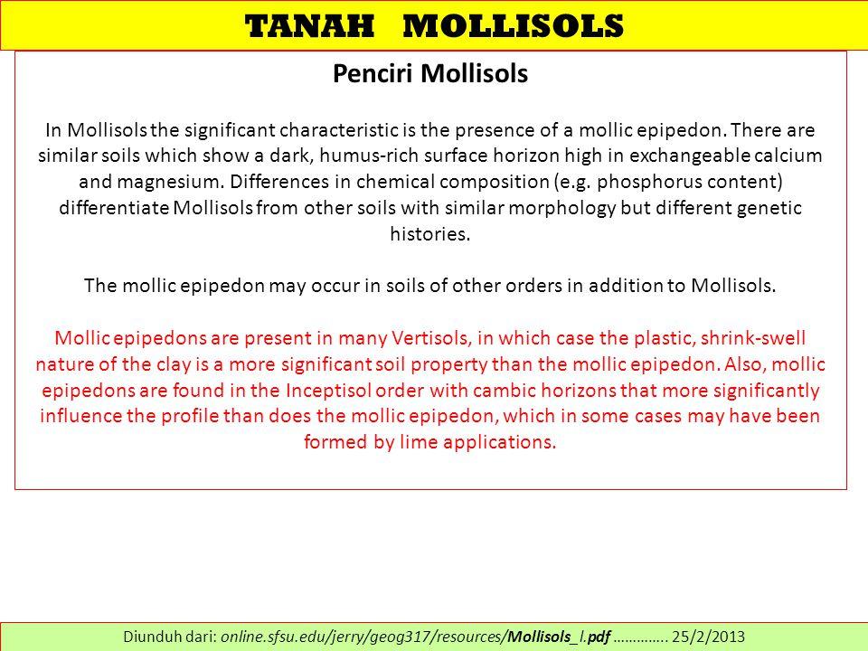 TANAH MOLLISOLS Penciri Mollisols In Mollisols the significant characteristic is the presence of a mollic epipedon.