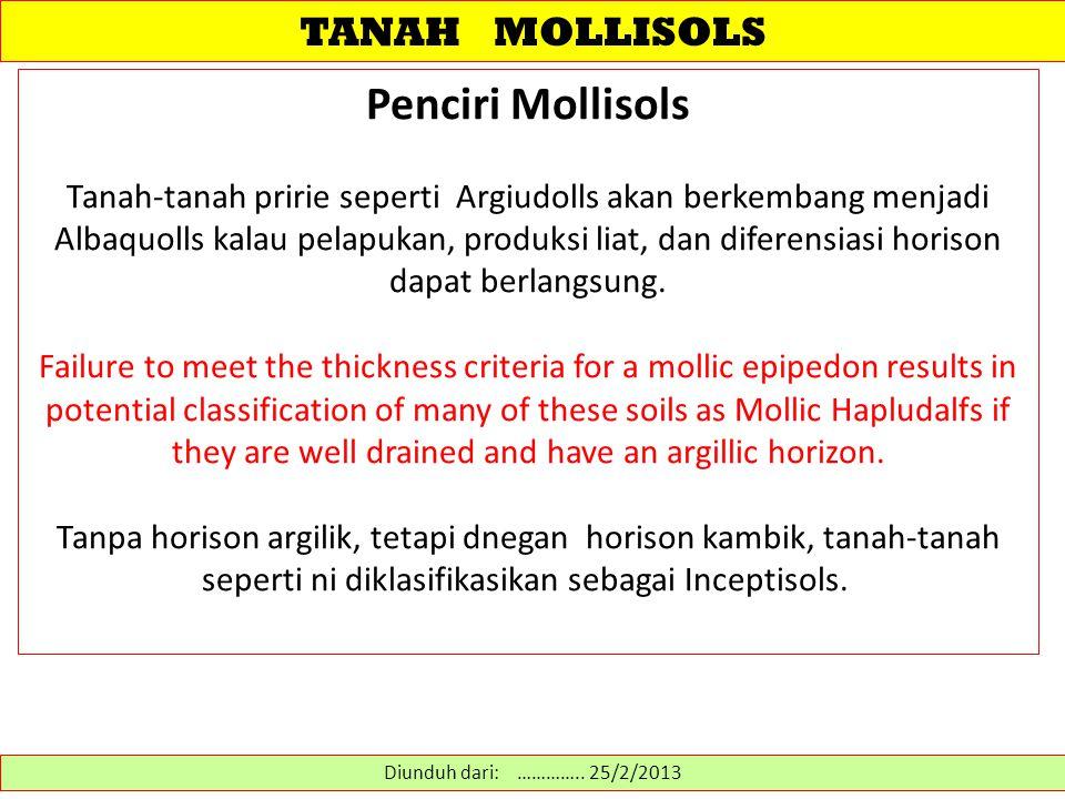 TANAH MOLLISOLS Penciri Mollisols Tanah-tanah pririe seperti Argiudolls akan berkembang menjadi Albaquolls kalau pelapukan, produksi liat, dan diferensiasi horison dapat berlangsung.