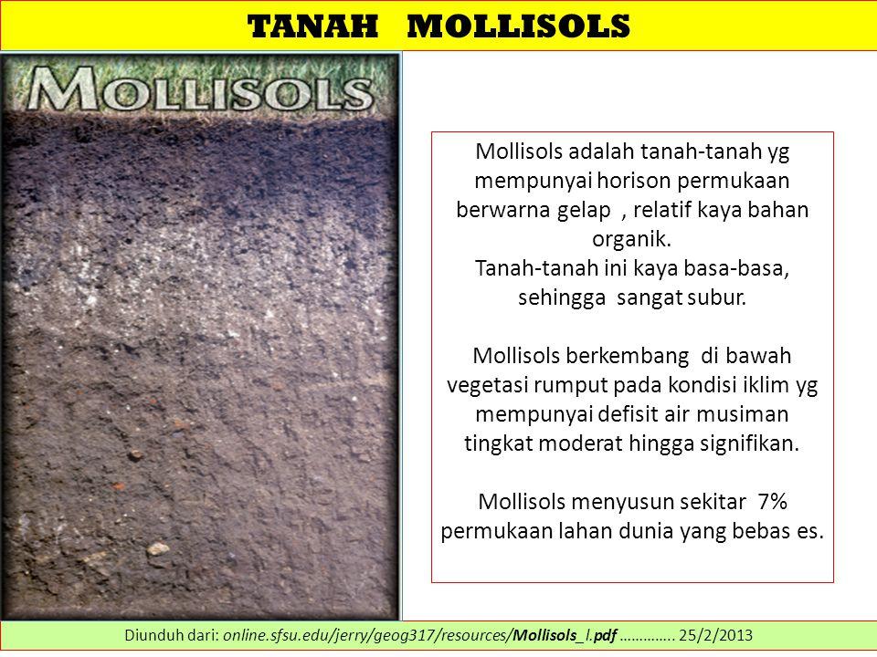 TANAH MOLLISOLS Mollisols adalah tanah-tanah yg mempunyai horison permukaan berwarna gelap, relatif kaya bahan organik. Tanah-tanah ini kaya basa-basa