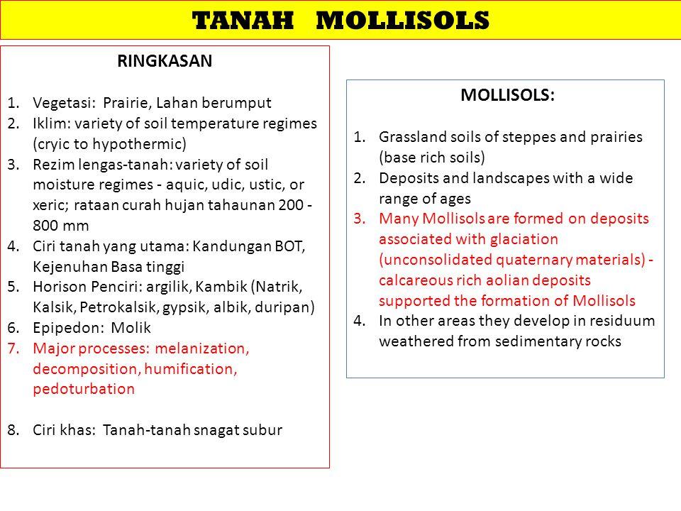 TANAH MOLLISOLS RINGKASAN 1.Vegetasi: Prairie, Lahan berumput 2.Iklim: variety of soil temperature regimes (cryic to hypothermic) 3.Rezim lengas-tanah: variety of soil moisture regimes - aquic, udic, ustic, or xeric; rataan curah hujan tahaunan 200 - 800 mm 4.Ciri tanah yang utama: Kandungan BOT, Kejenuhan Basa tinggi 5.Horison Penciri: argilik, Kambik (Natrik, Kalsik, Petrokalsik, gypsik, albik, duripan) 6.Epipedon: Molik 7.Major processes: melanization, decomposition, humification, pedoturbation 8.Ciri khas: Tanah-tanah snagat subur MOLLISOLS: 1.Grassland soils of steppes and prairies (base rich soils) 2.Deposits and landscapes with a wide range of ages 3.Many Mollisols are formed on deposits associated with glaciation (unconsolidated quaternary materials) - calcareous rich aolian deposits supported the formation of Mollisols 4.In other areas they develop in residuum weathered from sedimentary rocks