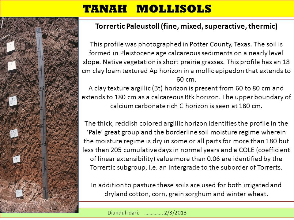 TANAH MOLLISOLS Torrertic Paleustoll (fine, mixed, superactive, thermic) This profile was photographed in Potter County, Texas.