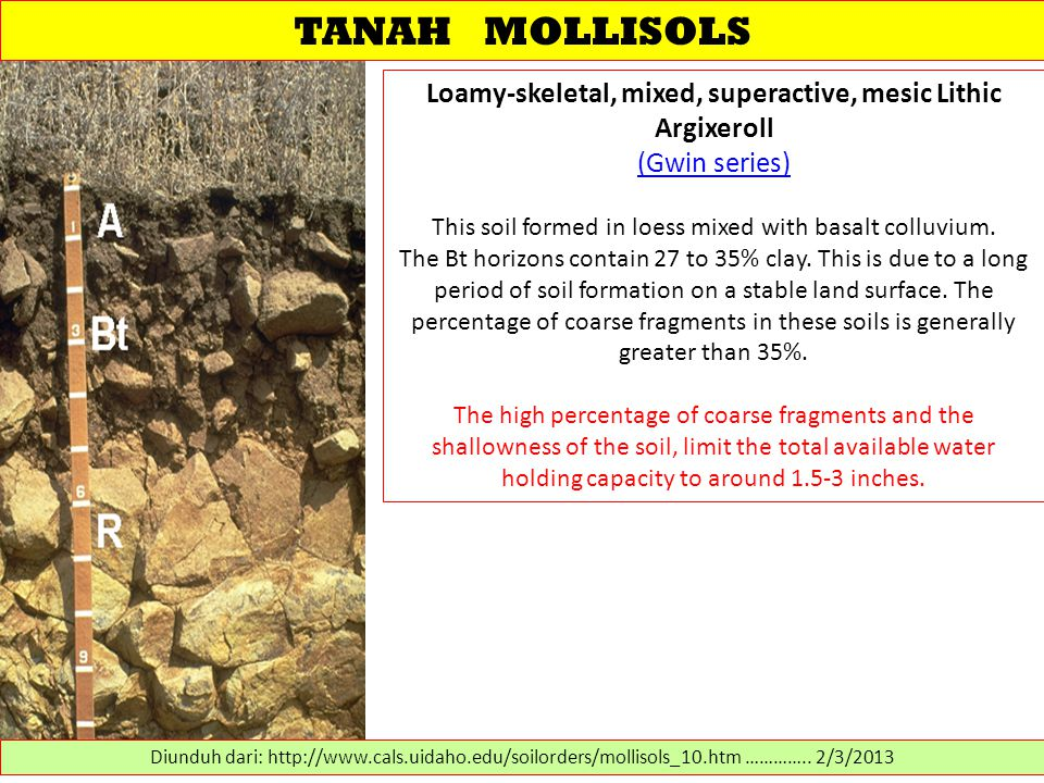 TANAH MOLLISOLS Loamy-skeletal, mixed, superactive, mesic Lithic Argixeroll (Gwin series) This soil formed in loess mixed with basalt colluvium. (Gwin
