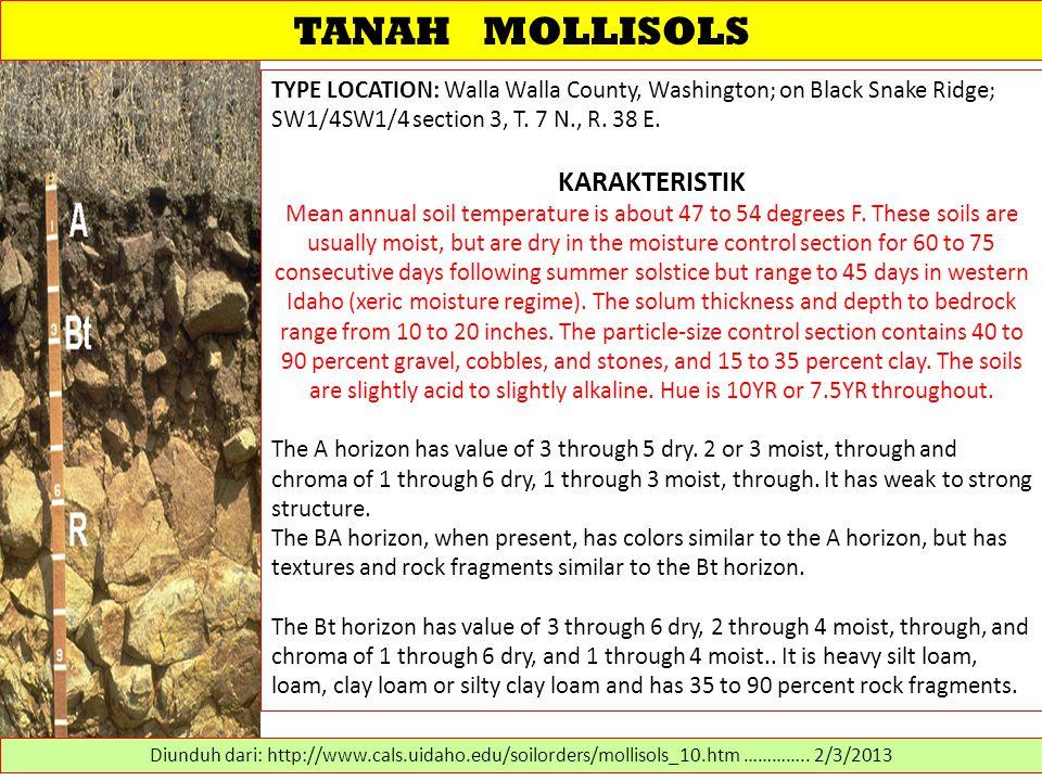 TANAH MOLLISOLS TYPE LOCATION: Walla Walla County, Washington; on Black Snake Ridge; SW1/4SW1/4 section 3, T. 7 N., R. 38 E. KARAKTERISTIK Mean annual