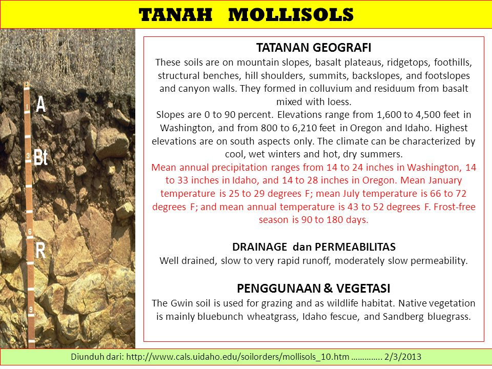 TANAH MOLLISOLS TATANAN GEOGRAFI These soils are on mountain slopes, basalt plateaus, ridgetops, foothills, structural benches, hill shoulders, summit