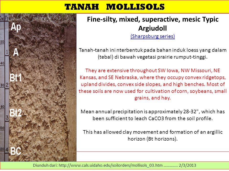 TANAH MOLLISOLS Fine-silty, mixed, superactive, mesic Typic Argiudoll (Sharpsburg series) (Sharpsburg series) Tanah-tanah ini nterbentuk pada bahan induk loess yang dalam (tebal) di bawah vegetasi prairie rumput-tinggi.