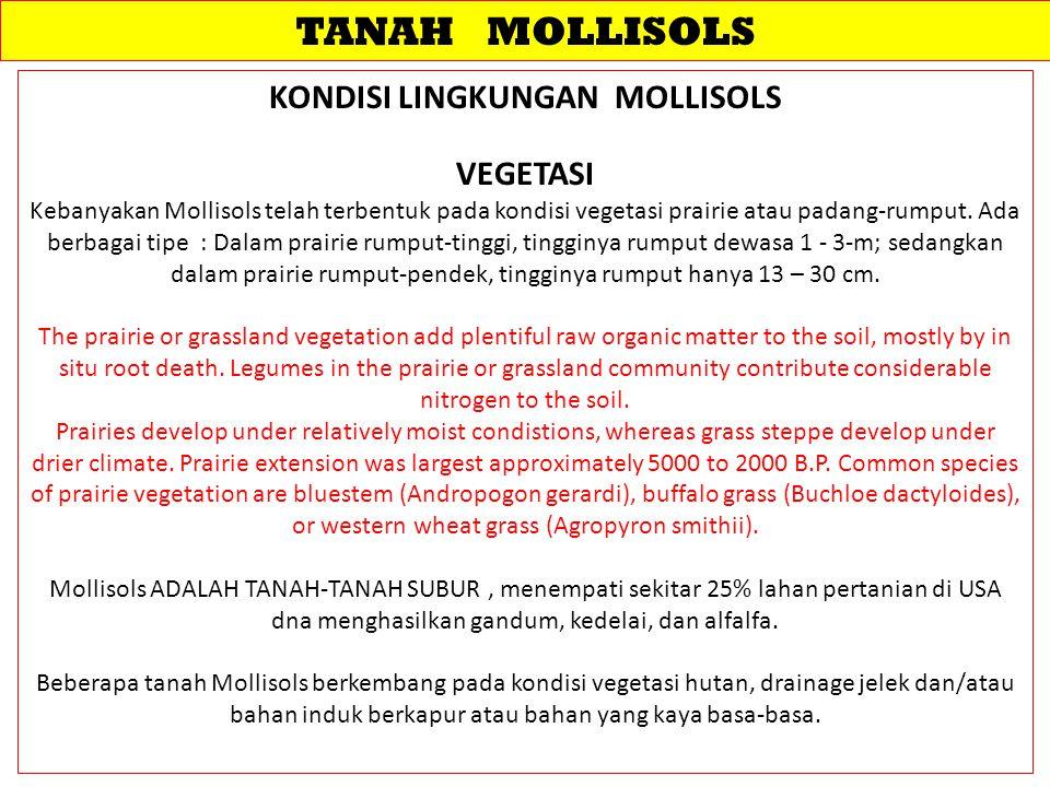 TANAH MOLLISOLS KONDISI LINGKUNGAN MOLLISOLS VEGETASI Kebanyakan Mollisols telah terbentuk pada kondisi vegetasi prairie atau padang-rumput. Ada berba