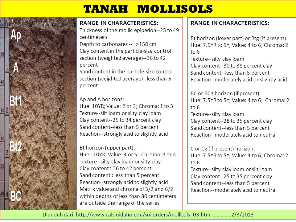 TANAH MOLLISOLS RANGE IN CHARACTERISTICS: Thickness of the mollic epipedon--25 to 49 centimeters Depth to carbonates -- >150 cm Clay content in the pa