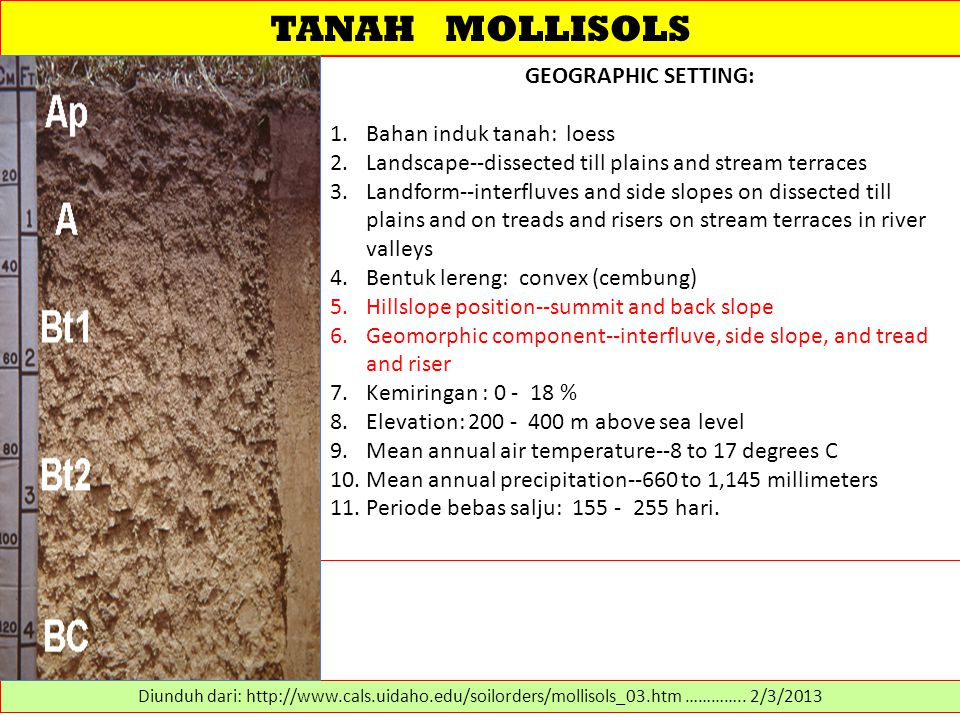 TANAH MOLLISOLS GEOGRAPHIC SETTING: 1.Bahan induk tanah: loess 2.Landscape--dissected till plains and stream terraces 3.Landform--interfluves and side