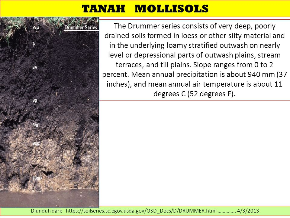 TANAH MOLLISOLS The Drummer series consists of very deep, poorly drained soils formed in loess or other silty material and in the underlying loamy stratified outwash on nearly level or depressional parts of outwash plains, stream terraces, and till plains.