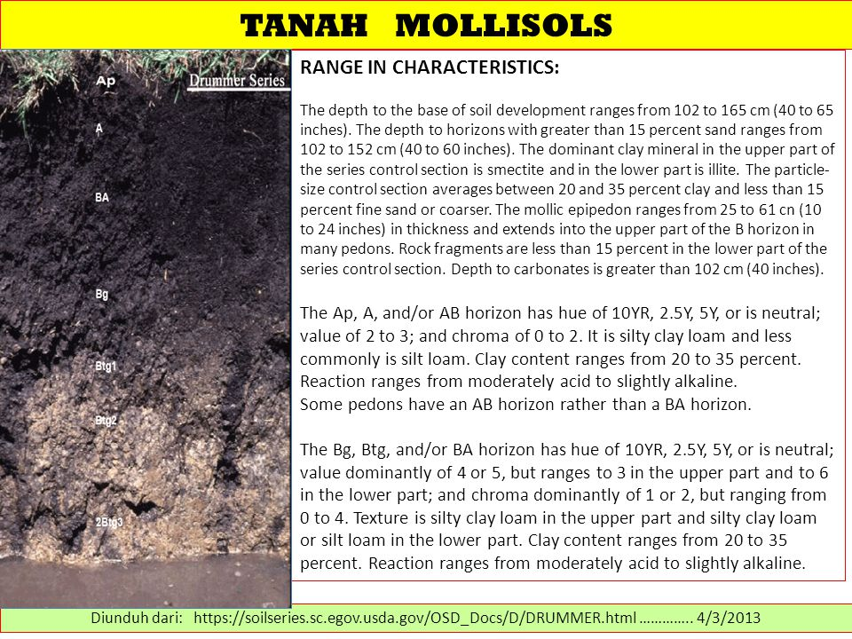 TANAH MOLLISOLS RANGE IN CHARACTERISTICS: The depth to the base of soil development ranges from 102 to 165 cm (40 to 65 inches).