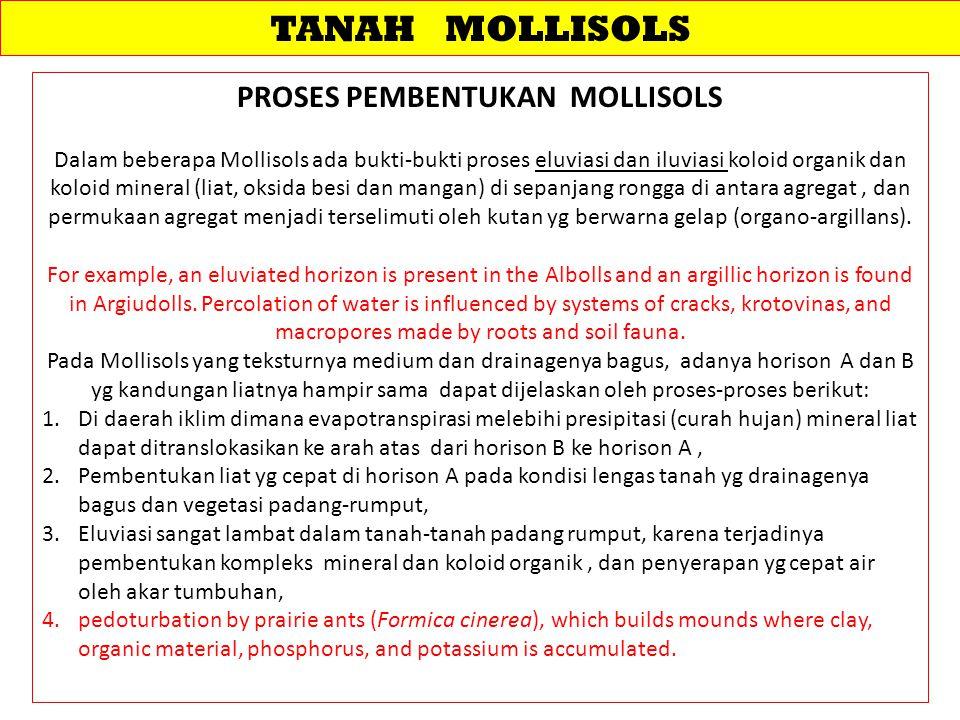TANAH MOLLISOLS PROSES PEMBENTUKAN MOLLISOLS Dalam beberapa Mollisols ada bukti-bukti proses eluviasi dan iluviasi koloid organik dan koloid mineral (liat, oksida besi dan mangan) di sepanjang rongga di antara agregat, dan permukaan agregat menjadi terselimuti oleh kutan yg berwarna gelap (organo-argillans).