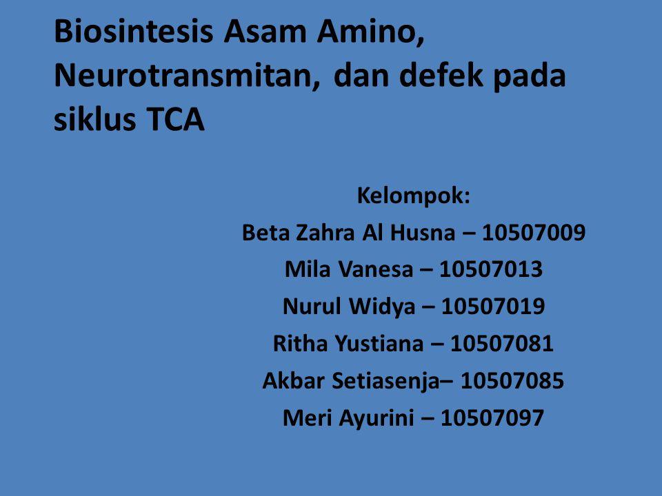 Biosintesis Asam Amino, Neurotransmitan, dan defek pada siklus TCA Kelompok: Beta Zahra Al Husna – 10507009 Mila Vanesa – 10507013 Nurul Widya – 10507019 Ritha Yustiana – 10507081 Akbar Setiasenja– 10507085 Meri Ayurini – 10507097