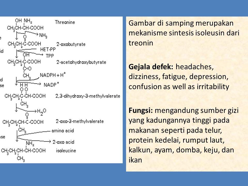 Sistein Gejala defek :  memperlambat pertumbuhan pada anak-anak,  penurunan tingkat serum protein penting, hilangnya pigmentasi pada rambut,  edema,  kelesuan,  kerusakan hati,  kehilangan otot,  lesi kulit,  kelemahan,  kehilangan lemak