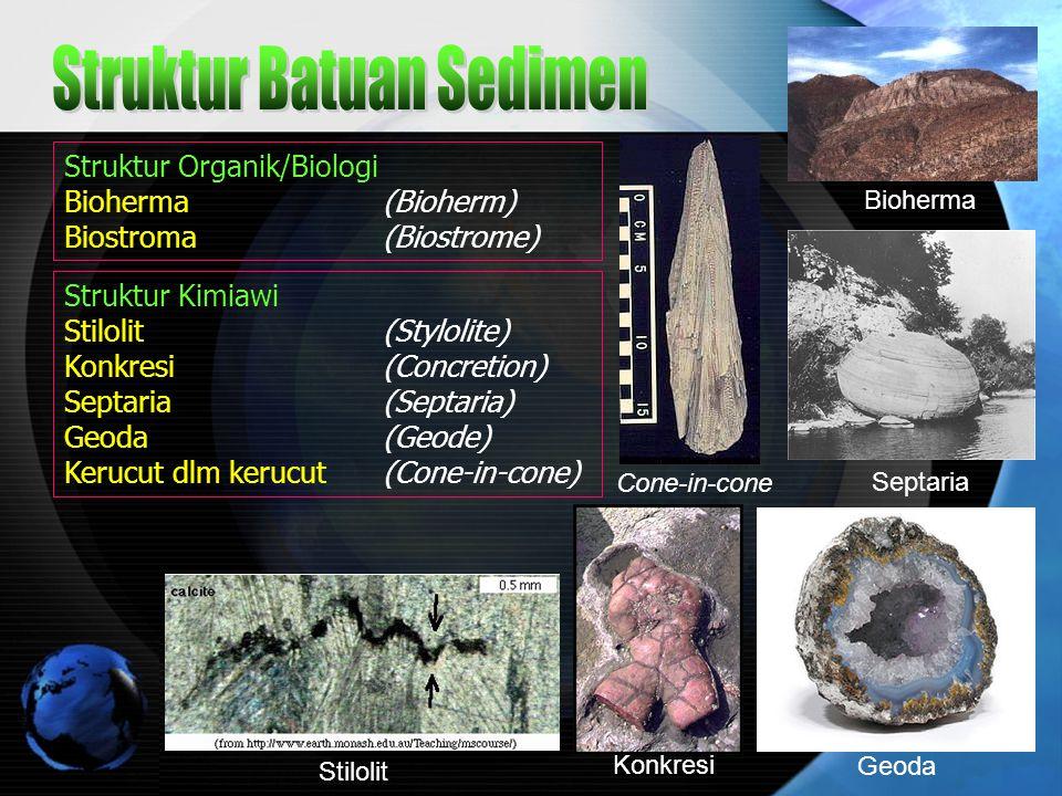 Struktur Kimiawi Stilolit (Stylolite) Konkresi (Concretion) Septaria (Septaria) Geoda (Geode) Kerucut dlm kerucut (Cone-in-cone) Struktur Organik/Biol