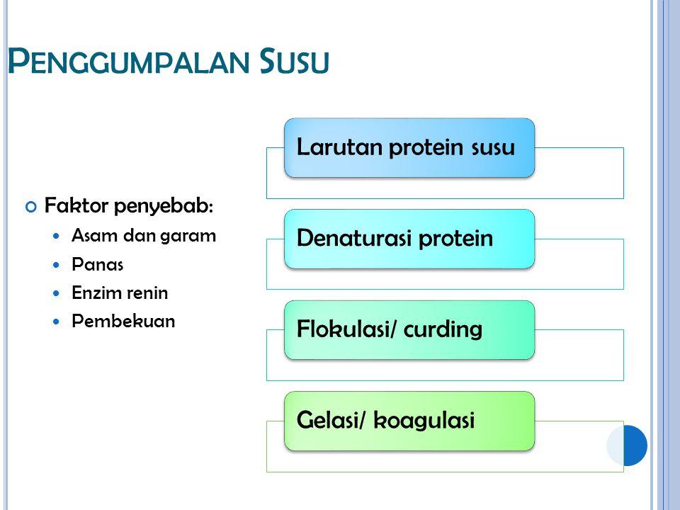 P ENGGUMPALAN S USU Faktor penyebab: Asam dan garam Panas Enzim renin Pembekuan Larutan protein susuDenaturasi proteinFlokulasi/ curdingGelasi/ koagul
