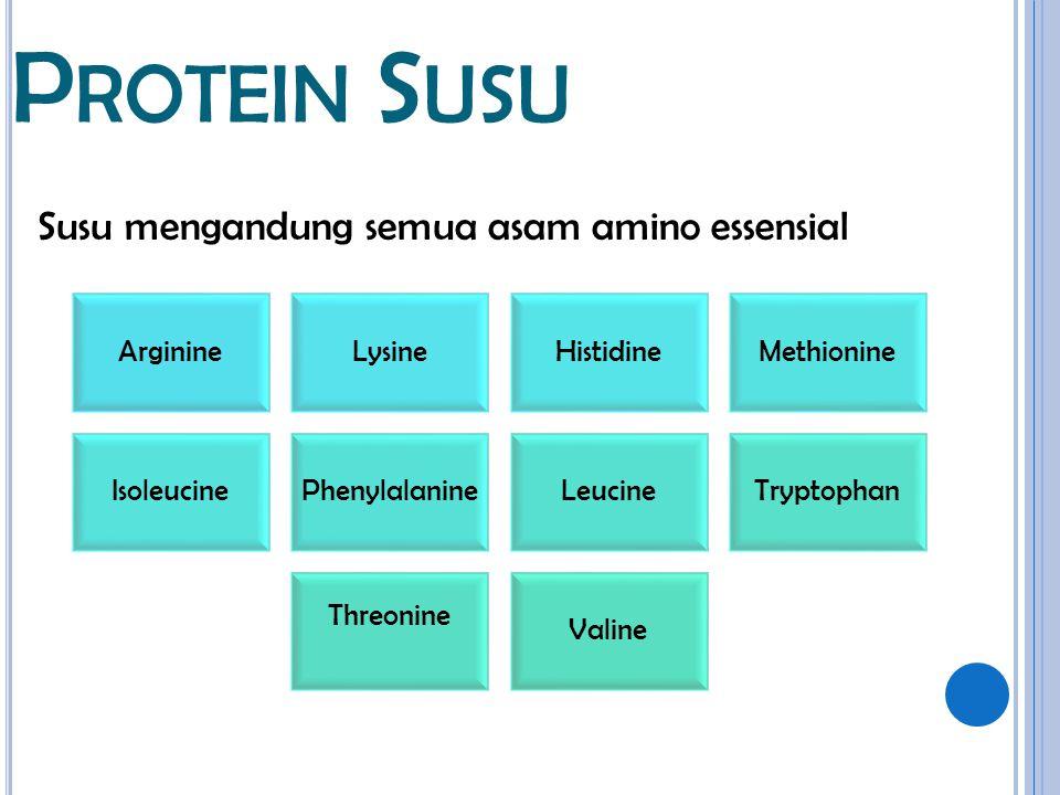 Susu mengandung semua asam amino essensial P ROTEIN S USU ArginineLysineHistidineMethionine IsoleucinePhenylalanineLeucineTryptophan Threonine Valine