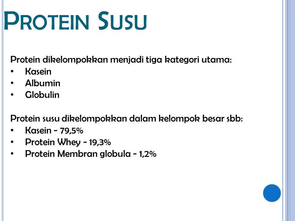 P ROTEIN S USU Protein dikelompokkan menjadi tiga kategori utama: Kasein Albumin Globulin Protein susu dikelompokkan dalam kelompok besar sbb: Kasein