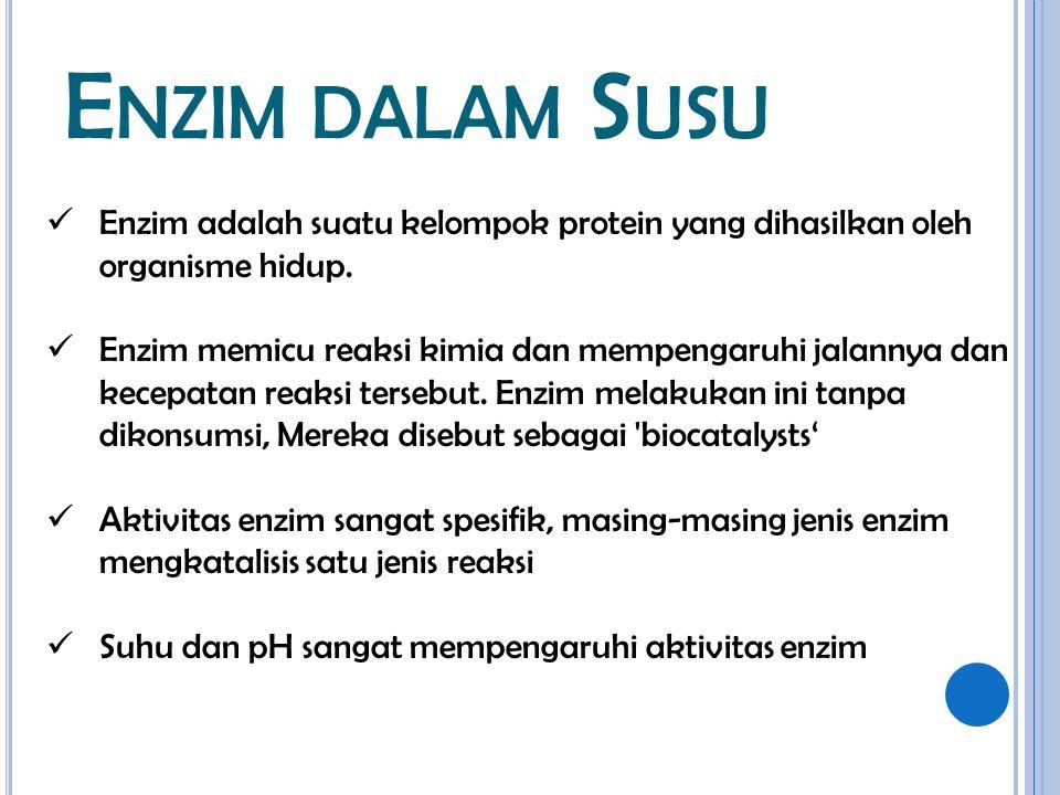 E NZIM DALAM S USU Enzim adalah suatu kelompok protein yang dihasilkan oleh organisme hidup. Enzim memicu reaksi kimia dan mempengaruhi jalannya dan k