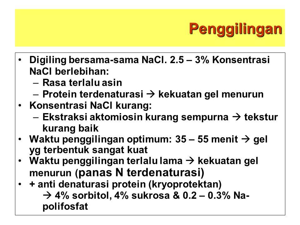 Penggilingan Digiling bersama-sama NaCl. 2.5 – 3% Konsentrasi NaCl berlebihan: –Rasa terlalu asin –Protein terdenaturasi  kekuatan gel menurun Konsen