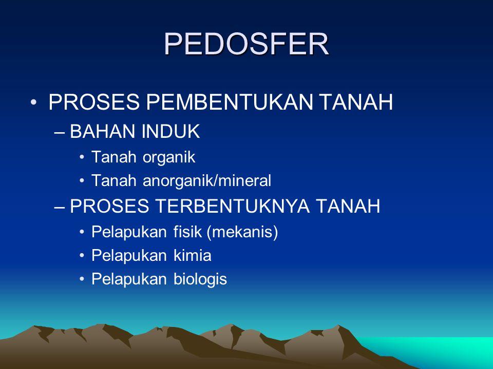 PEDOSFER PROSES PEMBENTUKAN TANAH –BAHAN INDUK Tanah organik Tanah anorganik/mineral –PROSES TERBENTUKNYA TANAH Pelapukan fisik (mekanis) Pelapukan ki