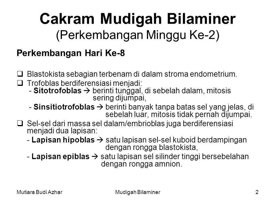 Mutiara Budi AzharMudigah Bilaminer2 Cakram Mudigah Bilaminer (Perkembangan Minggu Ke-2) Perkembangan Hari Ke-8  Blastokista sebagian terbenam di dalam stroma endometrium.