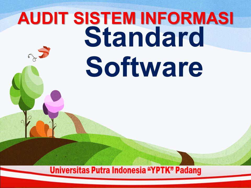 AUDIT SISTEM INFORMASI Standard Software