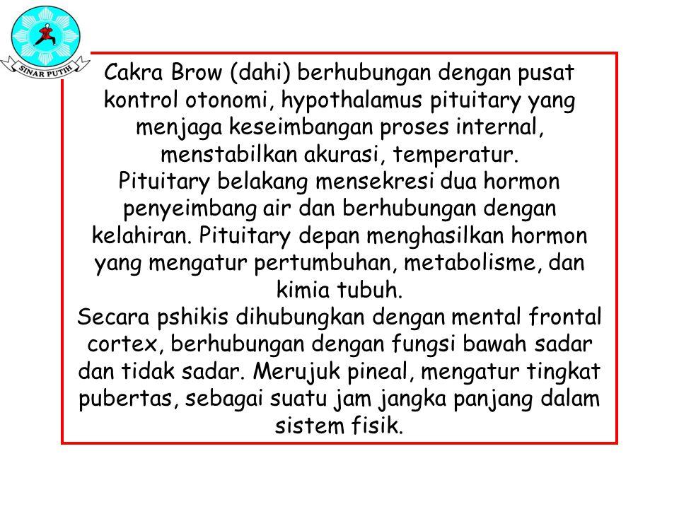 Cakra Brow (dahi) berhubungan dengan pusat kontrol otonomi, hypothalamus pituitary yang menjaga keseimbangan proses internal, menstabilkan akurasi, te