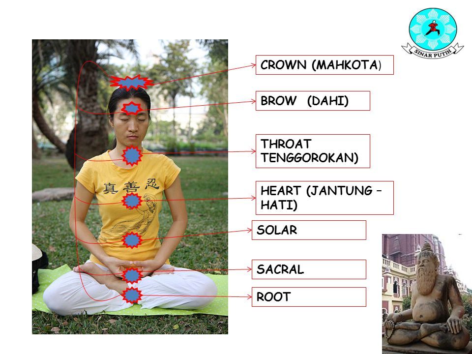 CROWN (MAHKOTA ) BROW (DAHI) THROAT TENGGOROKAN) HEART (JANTUNG – HATI) SOLAR SACRAL ROOT