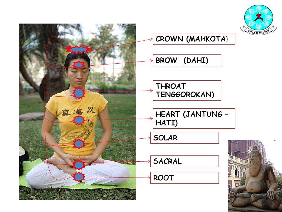 Cakra Root: merupakan sumber inti energi dan menghidupkan aktivitas tubuh, pusat ini berhubungan dengan seksualitas, mengarah ke energi seksual (tubuh).