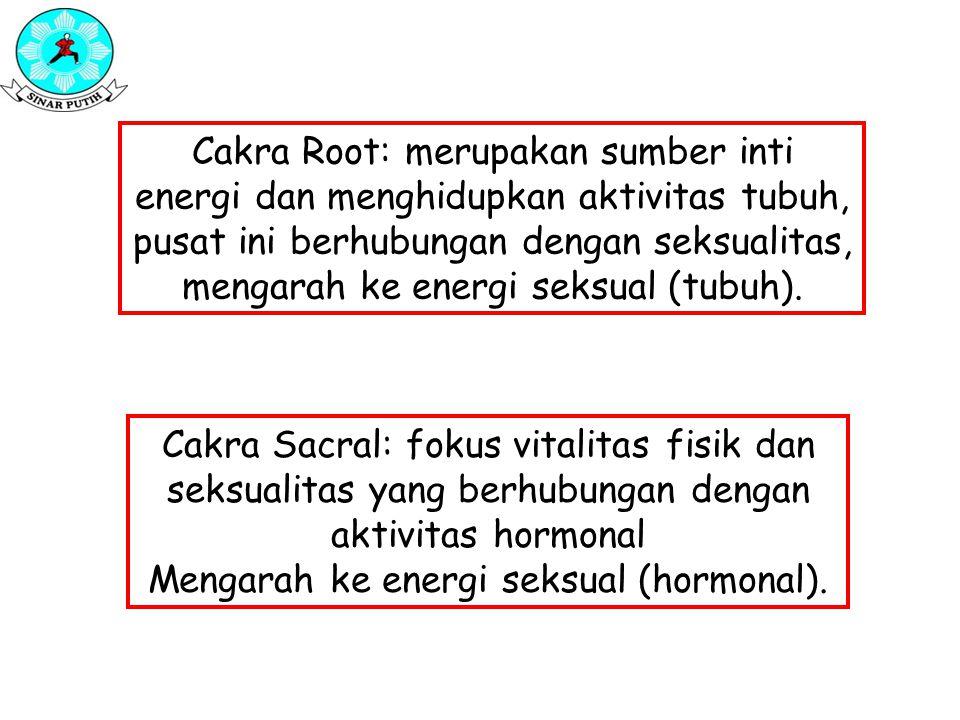 Cakra Root: merupakan sumber inti energi dan menghidupkan aktivitas tubuh, pusat ini berhubungan dengan seksualitas, mengarah ke energi seksual (tubuh