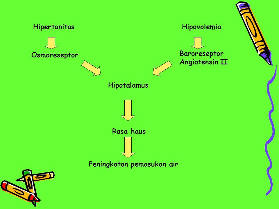 HipertonitasHipovolemia Osmoreseptor Baroreseptor Angiotensin II Hipotalamus Rasa haus Peningkatan pemasukan air