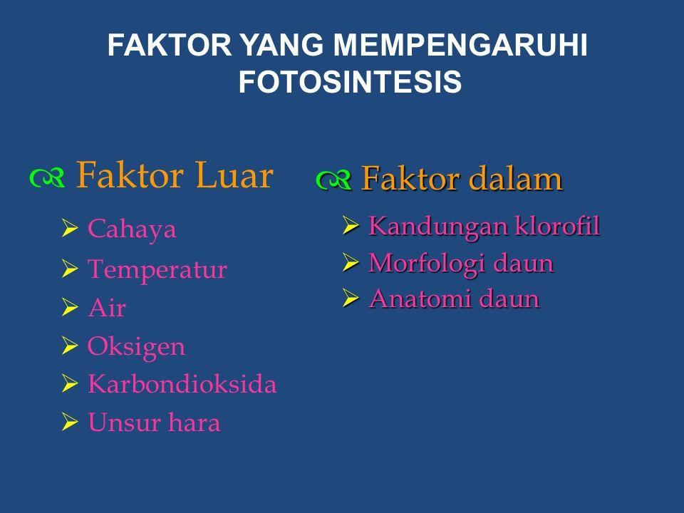  Faktor Luar  Cahaya  Temperatur  Air  Oksigen  Karbondioksida  Unsur hara  Faktor dalam  Kandungan klorofil  Morfologi daun  Anatomi daun
