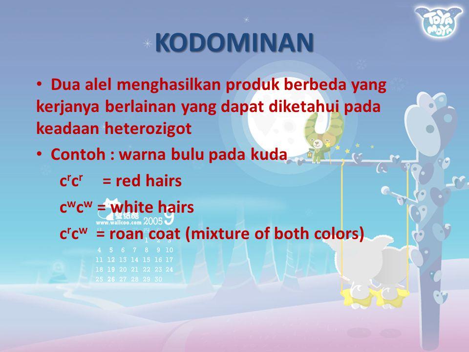 KODOMINAN Dua alel menghasilkan produk berbeda yang kerjanya berlainan yang dapat diketahui pada keadaan heterozigot Contoh : warna bulu pada kuda c r