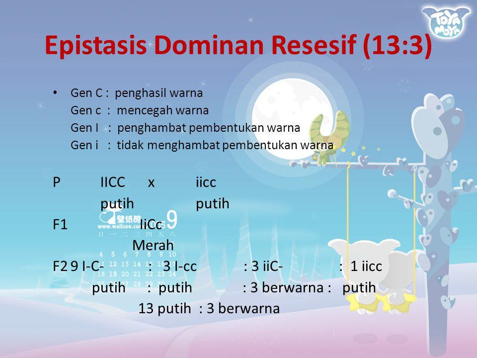 Epistasis Dominan Resesif (13:3) Gen C : penghasil warna Gen c : mencegah warna Gen I : penghambat pembentukan warna Gen i : tidak menghambat pembentu
