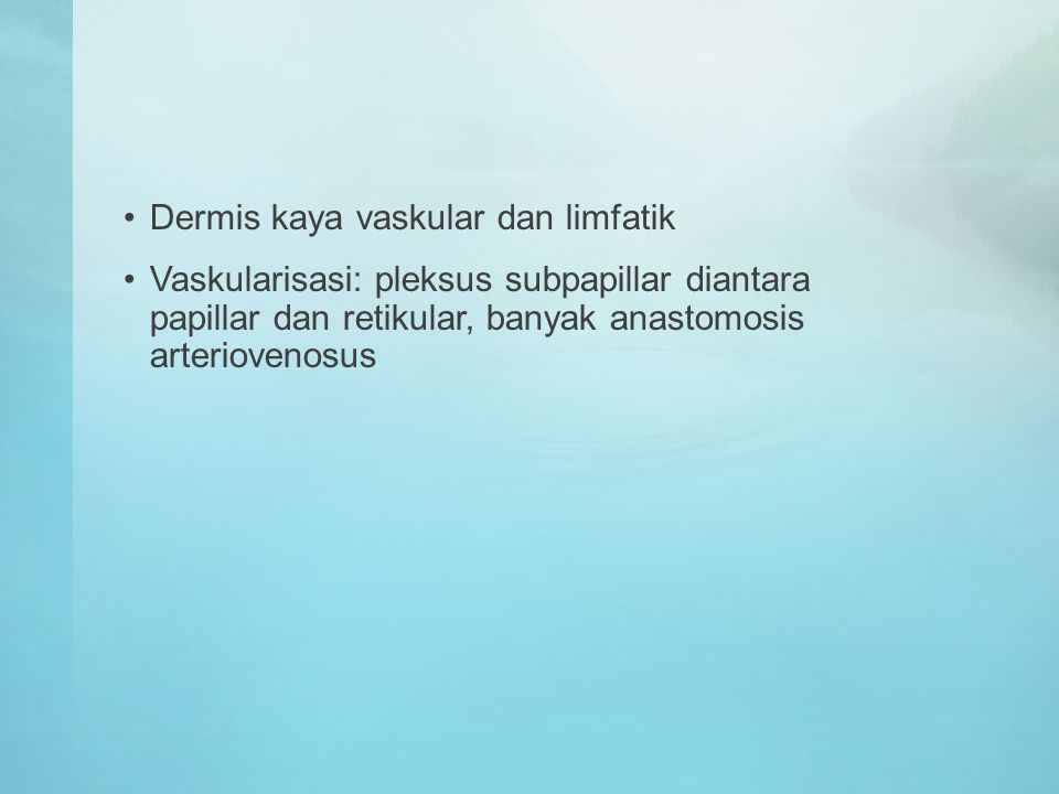 Dermis kaya vaskular dan limfatik Vaskularisasi: pleksus subpapillar diantara papillar dan retikular, banyak anastomosis arteriovenosus