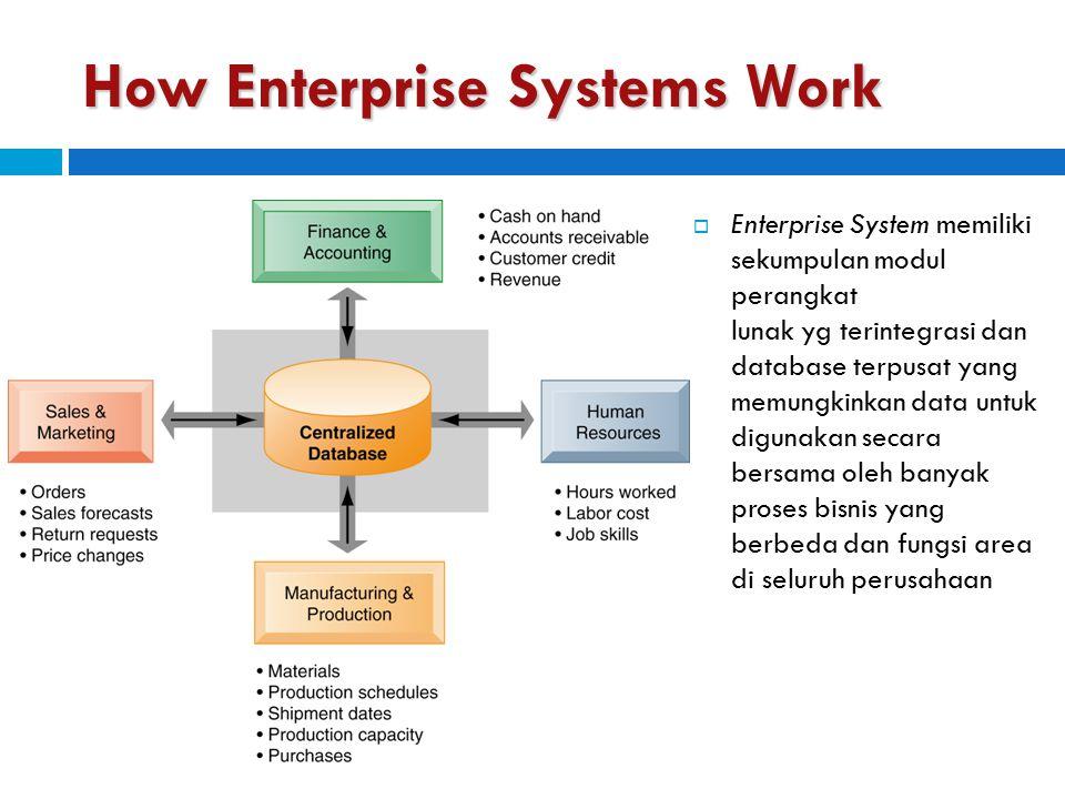 How Enterprise Systems Work (cont)  Database mengumpulkan data dari berbagai Divisi- divisi dan Departement-departement yang berbeda  Aplikasi menyediakan data yang mendukung hampir semua kegiatan bisnis internal organisasi  Ketika informasi baru dimasukkan oleh satu proses, informasi yang dibuat akan segera tersedia untuk proses bisnis lainnya
