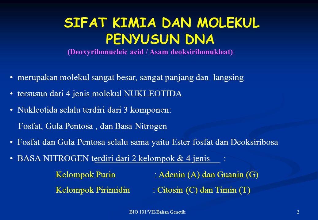 2BIO 101/VII/Bahan Genetik SIFAT KIMIA DAN MOLEKUL PENYUSUN DNA (Deoxyribonucleic acid / Asam deoksiribonukleat): merupakan molekul sangat besar, sangat panjang dan langsing tersusun dari 4 jenis molekul NUKLEOTIDA Nukleotida selalu terdiri dari 3 komponen: Fosfat, Gula Pentosa, dan Basa Nitrogen Fosfat dan Gula Pentosa selalu sama yaitu Ester fosfat dan Deoksiribosa BASA NITROGEN terdiri dari 2 kelompok & 4 jenis : Kelompok Purin Kelompok Pirimidin : Adenin (A) dan Guanin (G) : Citosin (C) dan Timin (T)
