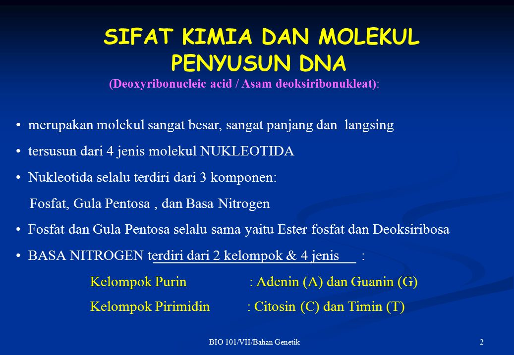 13BIO 101/VII/Bahan Genetik EKSPRESI GEN