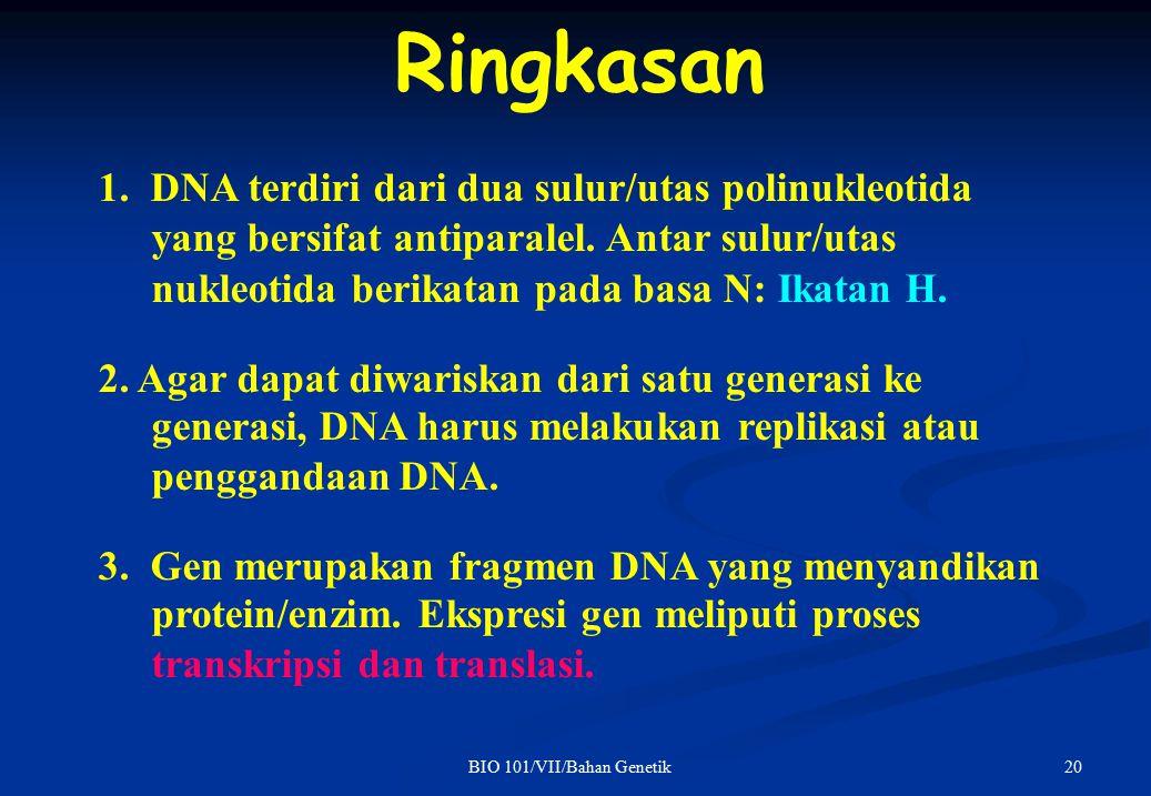 20BIO 101/VII/Bahan Genetik Ringkasan 1. DNA terdiri dari dua sulur/utas polinukleotida yang bersifat antiparalel. Antar sulur/utas nukleotida berikat