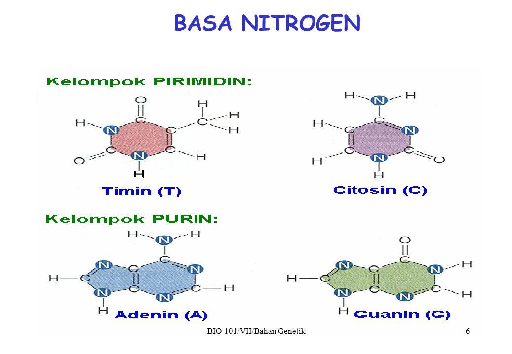terdiri dari dua sulur/rantai Polinukleotida yang bersifat Antiparalel (5'P - 3'OH // 3'OH - 5'P) antar sulur nukleotida berikatan pada basa-N secara Komplementer (A=T) dan (G=C) STRUKTUR DNA