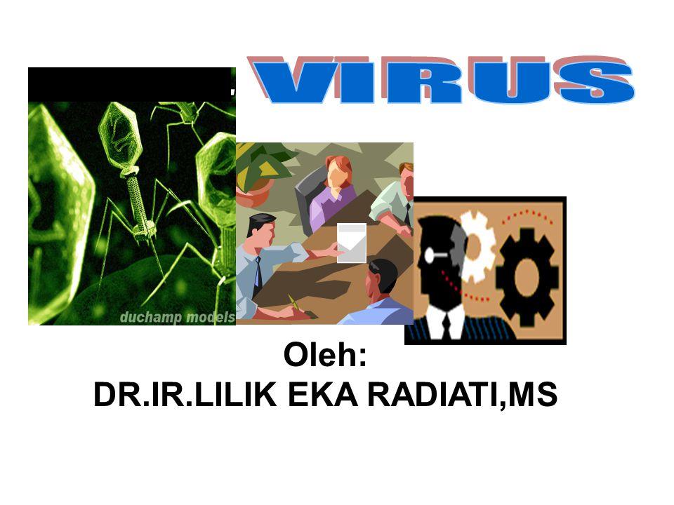 virus KARAKTERISTIK REPRODUKSI PERANAN VIRUS DALAM KEHIDUPAN PERANAN VIRUS DALAM KEHIDUPAN VAKSIN Daur litik Merugikan Daur lisogenik Menguntungkan